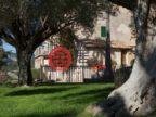 西班牙的房产,编号40923500