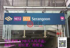 新加坡东北地区新加坡的房产,编号31786029