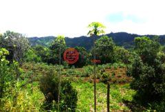 厄瓜多尔因巴布拉省Cotacachi的土地,Intag area,编号28067367