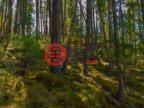 加拿大不列颠哥伦比亚省Sicamous的土地,Anstey Arm,编号50641008