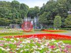 日本Saitama Prefecture川口市的房产,编号56521202