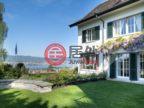 瑞士的房产,an erhöhter Lage,编号50800904