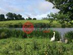 爱尔兰County CarlowCarlow的房产,Aghade Lodge Tullow,编号43481755