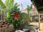 印尼DKI Jakarta雅加达的房产,编号48983199