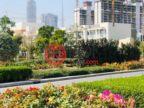 阿联酋迪拜迪拜的房产,Sobha Creek Vistas - Near Downtown Dubai,编号54527130