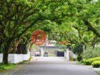 中国台湾Taipei CityTaipei City的房产,Zhongyong 1st Rd. Shilin Dist.,编号39814257