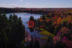 加拿大安大略省多伦多的房产,编号36241276