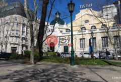 葡萄牙的房产,Avenida da Liberdade, 40,编号37579109