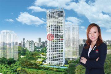 中星加坡房產房價_新加坡房產房價_居外網在售新加坡4臥4衛新房的房產總占地20000平方米SGD 16,000,000