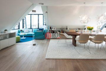 居外网在售奥地利维也纳最近整修过的房产总占地275平方米EUR 7,500,000