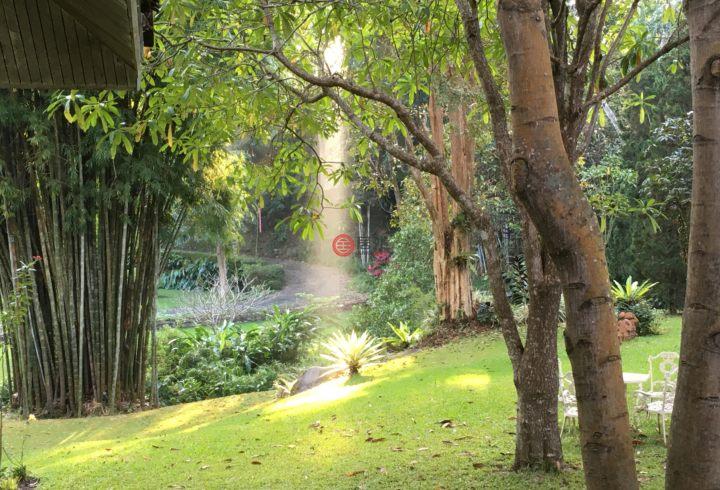 泰国清迈府杭东的多单元,96 Moo 4,编号31147195